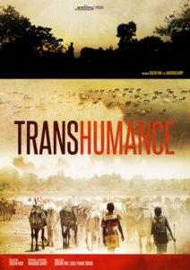visuel-transhumance
