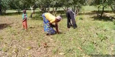 Titao : Difficile accès à la terre cultivable par des déplacés internes !